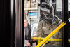 Portraits in public (Dimitris Psilopoulos) Tags: portraits street bus streetphotography stop man glass door dirtydoor abstractportrait