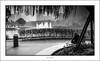 Morning contemplation (G. Postlethwaite esq.) Tags: bw canon40d china shanghai sigma1020 blackandwhite candid fountain lake man monochrome morning park photoborder wideangle