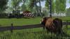 Mercdes Benz Trac 1400 & Kverneland Plough (Malmöstad) Tags: cattle crops mercdes benz trac 1400 kverneland plough game screenshot video pc simulator farm farming cow ai