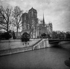 Notre-Dame de Paris (lamachineaveugle) Tags: paris lomo dots lamachineaveugle