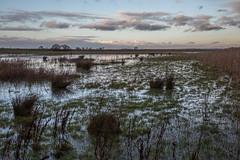 Alkborough Flats (ClydeHouse) Tags: alkboroughflats byandrew riverhumber riverouse lincolnshirewildlifetrust rivertrent alkborough