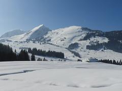 Col des Mosses (Suisse) (Annelise LE BIAN) Tags: suisse neige montagnes coldesmosses picchaussy alittlebeauty coth coth5