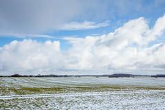 IMG_6757 (mollyblobs) Tags: cambridgeshire castor location unitedkingdom arable snow