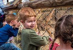 Kids Enjoying some Long Necks at the Zoo. (Robert Streithorst) Tags: children cincinnatizoo giraffe max robertstreithorst zoosofnorthamerica