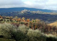 San Gimignano dopo la pioggia (anto_gal) Tags: toscana siena 2017 sangimignano poggibonsi panorama