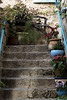 Up the stairs (Poupetta) Tags: stairs steps yaffo pots flowers