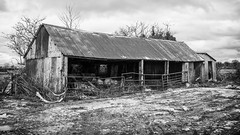 A Dilapidated Barn on the Worton Road (stevedewey2000) Tags: seend wiltshire worton buildings building structure barn blackandwhite bw monochrome desaturated sigma2470 169