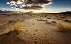 Footprints (Israel DeAlba) Tags: desert desierto arena sand dunes light israeldealba morning nwn nubes clouds