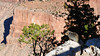 Grand Canyon squirrel (Shot Yield Photography) Tags: usa unitedstates arizona grandcanyon landscape nature countryside wildlife squirrel rock rocks holiday vacation recreation adventure hiking freedom