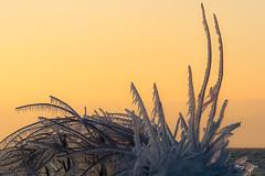 Bise glaçante sur le lac Léman (MarKus Fotos) Tags: alpes alps chablais canon vagues vague landscape léman leman lac lake hautesavoie hiver winter france frozen froid glace glacial tempete