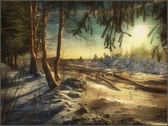Winter evening (odinvadim) Tags: landscape iphoneonly winter iphoneart iphoneography mytravelgram distressedfx painterlymobileart iphone snapseed evening travel obninsk sunset frost artist textured forest textures editmaster