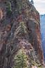 To Seek Out Angels (twinblade_sakai340) Tags: adventure angel fun hike hiker hiking landing landscape mountain mountains national nature outdoor outdoors park slot utah wall zion