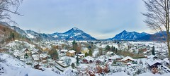 Winter panorama with The Alps in Bavaria, Germany (UweBKK (α 77 on )) Tags: winter panorama alps mountains trees snow sky grey village dorf bayern bavaria germany deutschland europa europe iphone