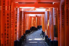 Kyoto morning walks (varsutherland) Tags: kyoto japan inari shrine orange walk morning early sun shadow temple rise nippon