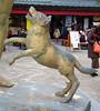 "Onomichi-026 (photozaki) Tags: ""dogs cats"" dog dogs inu cat cats neko shikoku japan ohenro88 ohenro pilgrimage"