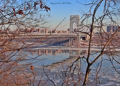 George Washington Bridge (1 of 4, Viewed from Fort Lee Historic Park, NJ—NYC Backdrop) in Arctic Freeze Period (takegoro) Tags: bridge georgewashington newyork newjersey fortleehistoricpark hudsonriver winter ice reflection blue