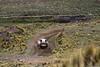 IMG_6622 (Kusi Seminario) Tags: race rally cars dakar dakar2018 dakarally peru stage6 stage 6