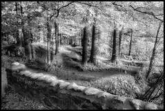 End Of The Bridge (Jason OC) Tags: 2017 canon5dmarkii canon jasonoconnell landscape saintbruno mountain blackandwhite