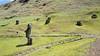 20171206_114713 (taver) Tags: chile rapanui easterisland isladepasqua summer samsunggalaxys6 dec2017 06122017 ranoraraku quary