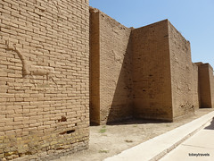Western Wall lower Ishtar Gate, Babylon (12).jpg (tobeytravels) Tags: iraq babylon babel mesopotamia akkadian amorite hammurabi assyrian neobabylonian hanginggardens achaemenid seleucid parthian roman sassanid alexanderthegreat nebuchadnezzar sargon chaldean hittites sennacherib xerxes