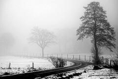 Winterlandschaft (grafenhans) Tags: sony rx100 rx 100 carl zeiss cz carlzeiss black white schwarz weiss strasse nebel winter schnee feld feldweg grafenwald bottrop nrw natur landschaft