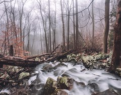 Fog and Flooding - Bays Mountain (josht712) Tags: 5d canon stream landscape nature vlog hike matte cinematic tree creek waterfall forest exposure long moody tennessee usa