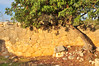 Cennet - Cehennem (Efkan Sinan) Tags: cennetcehennem onruk sinkhole concave ancientcity antikkent ruins örenyeri zeustapınağıvekilisesi templeofzeus church silifke mersin türkiye türkei turchia tr