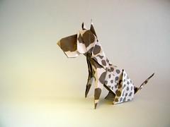 Great Dane - Seth Friedman (Rui.Roda) Tags: origami papiroflexia papierfalten dog chien perro cão cachorro dogue alemão grand danois great dane seth friedman