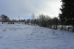 IMG_0216 (rudolf.brinkmoeller) Tags: eifel wandern natur eifelsteig