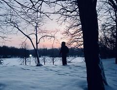 Winter Park, Poznan (Gokhan H.) Tags: winter snow frosty forest white nature landscape winterpark park poznan poland polska view canonixus100is