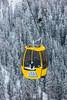 20171212-IMG_0159 (Nicola Pezzoli) Tags: dolomiti dolomites unesco val gardena winter snow alto adige italy bolzano mountain nature december alta badia corvara ovovia piz boé forest yellow