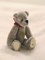 005 Ted