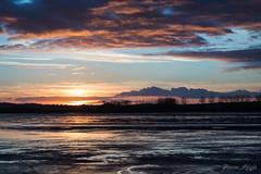 """Cold end ?"" (regisfiacre) Tags: coucher soleil paysage landscape sunset sundown lorraine moselle france nuages clouds nature canon 5div mark iv 4 plein format full frame 24105mm l ciel sky himmel sun sonne etang weyer pond bischwald"