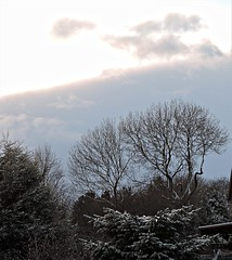 Changeable weather (Dun.can) Tags: snow winter leicestershire trees