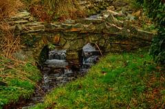 An ancient welsh mini bridge. (alex.vangroningen) Tags: northwales bridge stone meltingwater grass outdoors trees old nikond7000