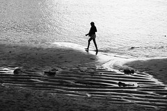on the hunt (Wackelaugen) Tags: silhouette beach water camera photographer canon eos photo photography wackelaugen black white bw blackwhite blackandwhite mono noiretblanc schwarz weis schwarzweis laspalmas grancanaria spain europe canaries canaryislands canaryisles