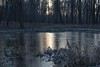 _MG_2820_Php (grzegorz_63) Tags: winter park pond sunrise trees ice reflection nature outside canon70d