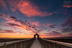 Portal to Sunset (A Camera Story) Tags: alviso alvisomarinacountypark bayarea california marsh sanjose slough sunset ca usa sonydslta99 sony1635mmf28