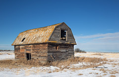 Prairie Barn (Canon Queen Rocks (1,966,000 + views)) Tags: prairies fields field sky scenery scenic structure structures timber barn wood banff bluesky snow winter landscape farmland farming landscapes outdoors momentsbycelinecom clouds