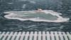 An ice island (BigWhitePelican) Tags: helsinki finland ice sea winter canoneos70d adobelightroom6 niktools 2018 january