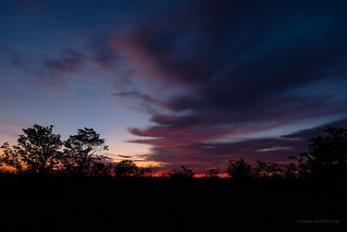 Road trip - sunrise near Bateleur Bush Camp, Kruger National Park