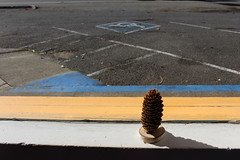 IMG_3241 (tsmattea1) Tags: jenner california russia russian highway 1 coast drive roadtrip window parking lot blue yellow pinecone shadow inside handicap empty cars restaurant house
