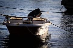 * (Gwenaël Piaser) Tags: egypt january 2018 janvier january2018 unlimitedphotos gwenaelpiaser canon eos 6d canoneos eos6d canoneos6d fullframe 24x36 reflex rawtherapee canonef70200mmf4lisusm 70200mm4l 70200mm canon70200f4 f4l usm canon70200mmf4 ef70200mmf4lisusm zoom lseries boat water eau river nil nile sun light جمهوريةمصرالعربية arabrepublicofegypt ⲭⲏⲙⲓ مَصر maṣr مِصر miṣr ⲥⲟⲩⲁⲛ أسوان συήνη syène swan souan 1000
