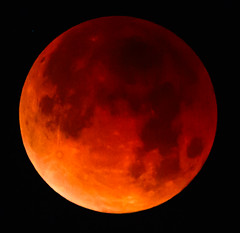 Blood Moon Lunar Eclipse (Carl Cohen_Pics) Tags: chandler arizona unitedstates lunar eclipse bloodmoon fullmoon moon