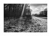 Beam (Jan Dobrovsky) Tags: summilux50mm countryside road ukraine church mood carpathians leicam10 beam outdoor snow winter countrylife document