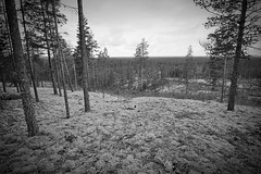 Summer Holiday 2017 (Sami Niemeläinen (instagram: santtujns)) Tags: suomi finland vaala matkailu camping luonto nature maisema landscape kesäloma bw monochrome mustavalkea