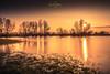 Abendsonne und Rheinhochwasser bei Niedermörmter, Kreis Kleve (nigel_xf) Tags: abendsonne rhein rheinhochwasser niedermörmter rees reeserschanz kalkar kleve kreiskleve niederrhein sunset sonnenuntergang nikon d750 nigel nigelxf vsfototeam spiegelung wasserspiegelung reflexion reflection wiese orange bäume trees water flood
