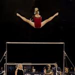 Graceful Soaring Gymnast thumbnail
