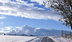 Petite balade (Diegojack) Tags: echandens vaud hiver route neige glace paysage campagne