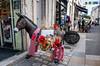 20170831-DSCF2073 Feeling a bit of an ass (susi luard 2012) Tags: france larochelle street bison donkey shops